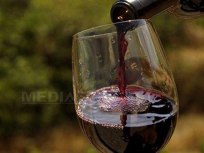 vin-pahar