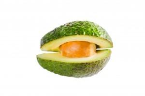 avocado metabolism